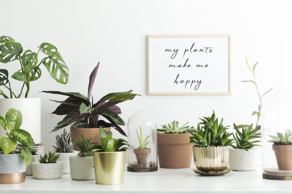 3 Ways to Make Your Home Feel Like Spring